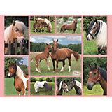 Пазл «Галерея лошадей» XXL 300 шт