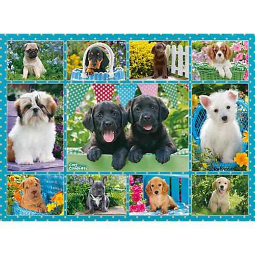 Пазл «Милые щенки» 500 шт от Ravensburger