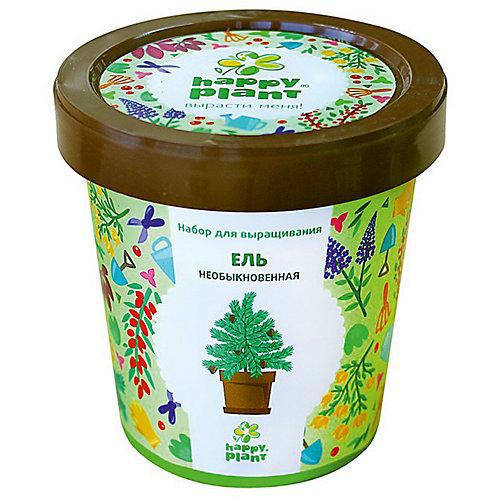 Набор для выращивания Ель необыкновенная от Happy Plant