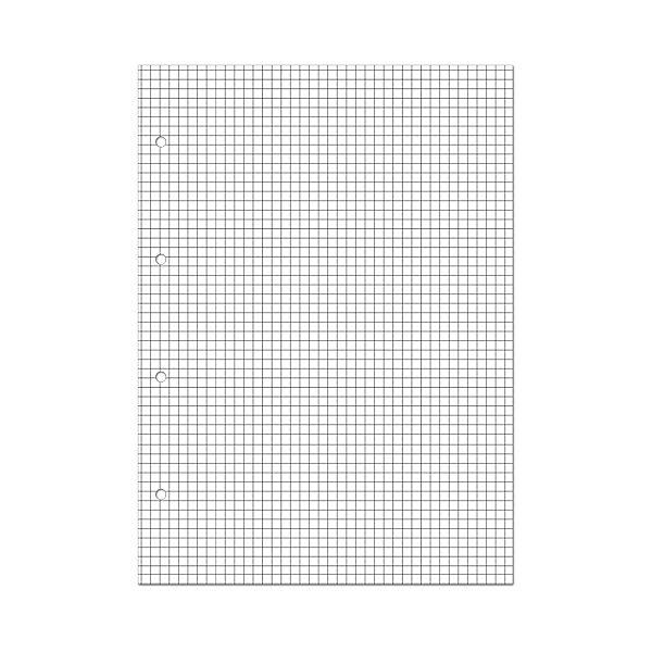 Сменные блоки для тетрадей на кольцах А5, 80л.
