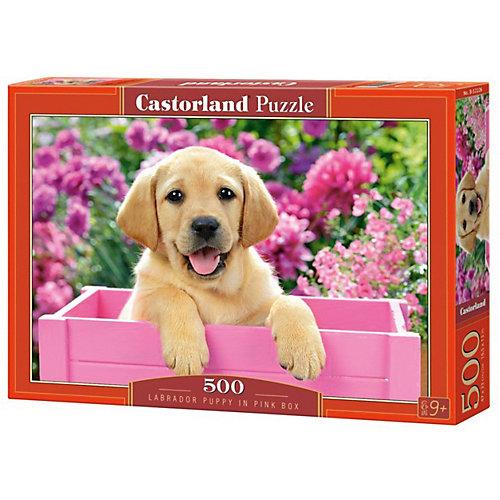 """Пазл Castorland """"Щенок в коробке"""" 500 деталей от Castorland"""
