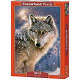 """Пазл Castorland """"Волк"""" 500 деталей"""