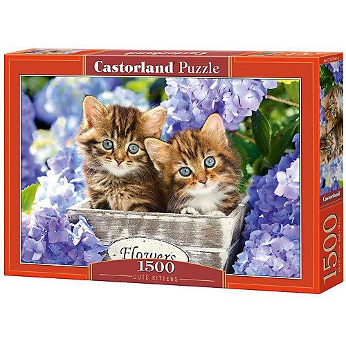 """Пазл Castorland """"Два котенка"""" 1500 деталей от Castorland"""