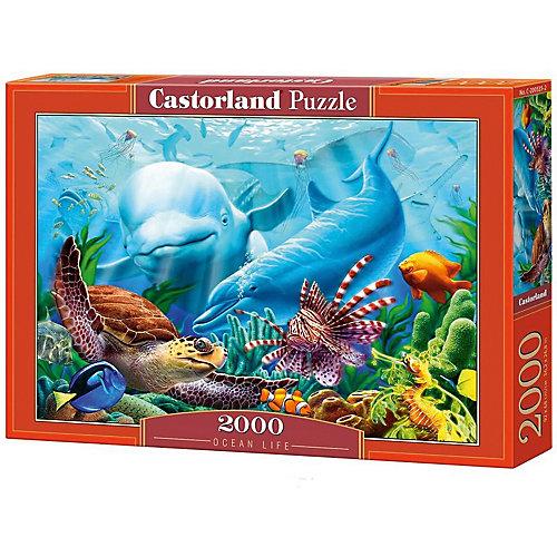 """Пазл Castorland """"Жизнь океана"""" 2000 деталей от Castorland"""
