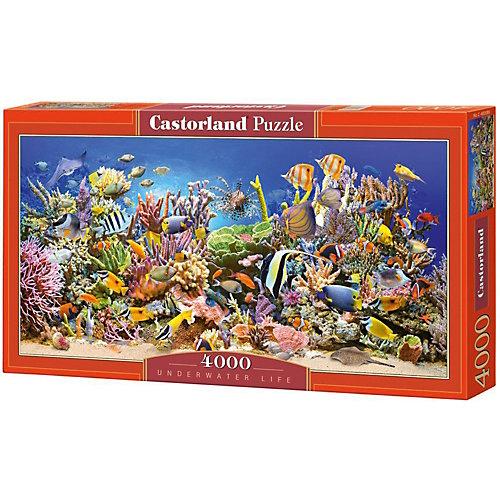 """Пазл Castorland """"Подводный мир"""" 4000 деталей от Castorland"""