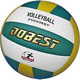 Волейбольный  мяч Dobest