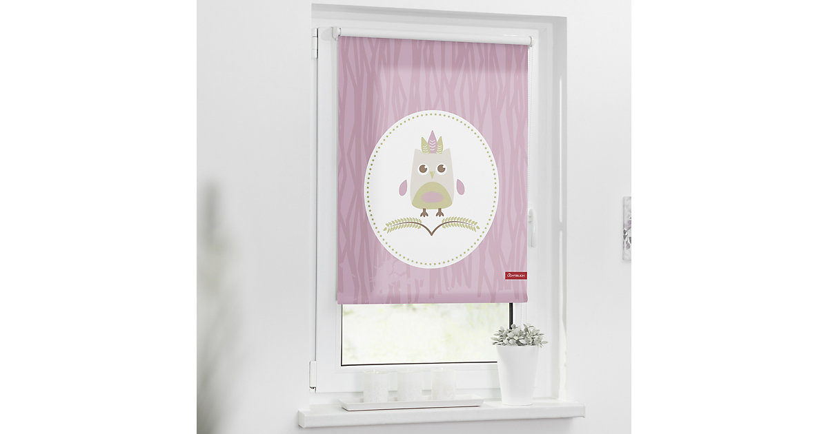 Lichtblick · Rollo Klemmfix, ohne Bohren, Verdunkelung, Sweety Gr. 80 x 150