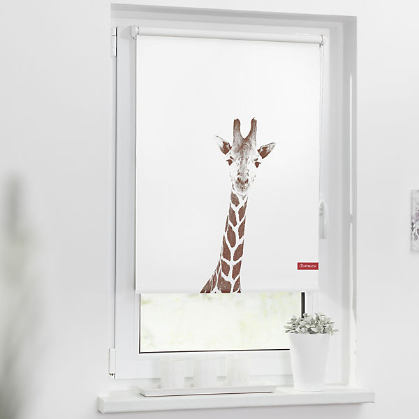 rollo klemmfix ohne bohren verdunkelung giraffe. Black Bedroom Furniture Sets. Home Design Ideas