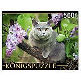 """Пазл Konigspuzzle """"Британская голубая кошка"""" 500 элементов"""