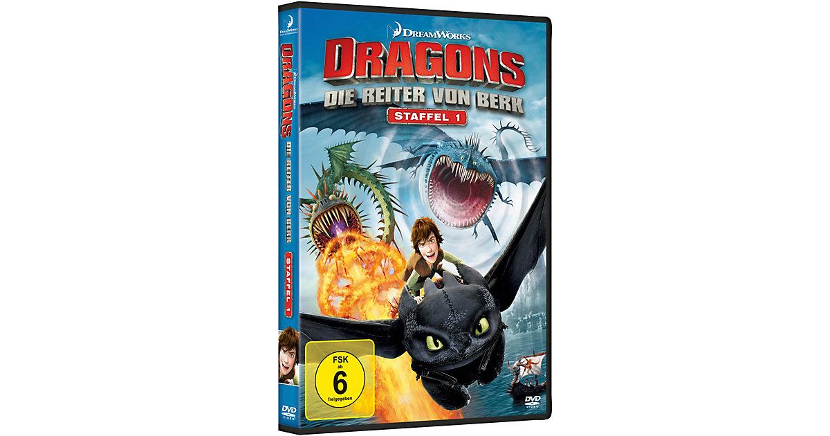 DVD Dragons - Die Reiter von Berk - Staffel 1 (Vol. 1-4 auf 4 DVDs) Hörbuch