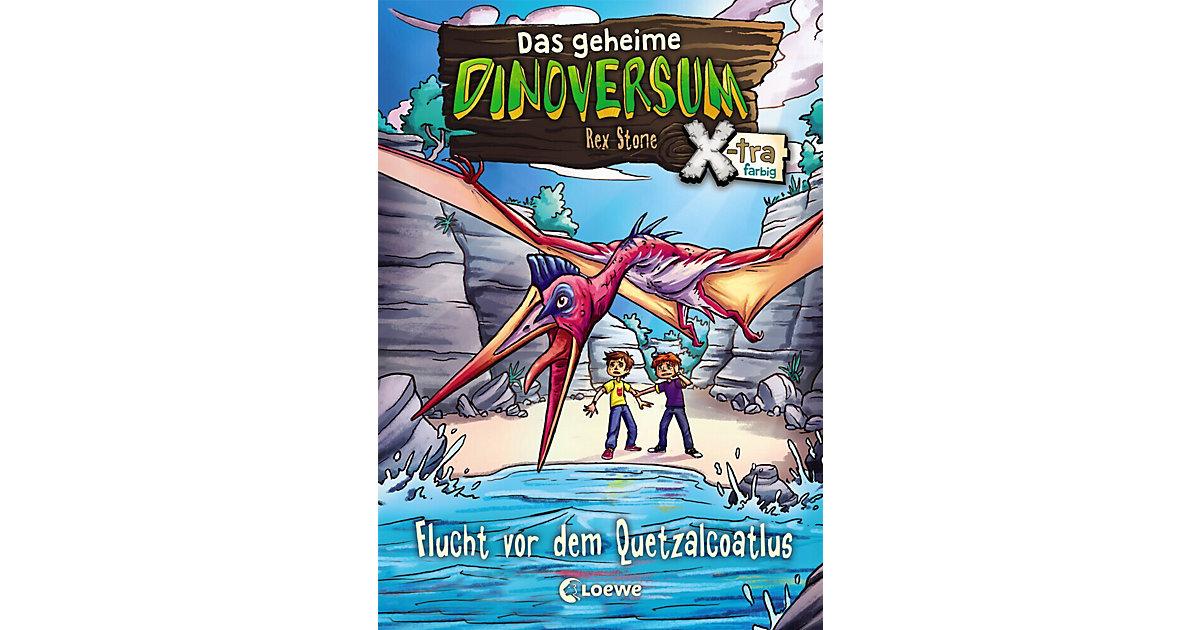 Das geheime Dinoversum Xtra: Flucht vor dem Que...