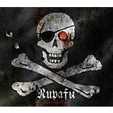 """Энциклопедия """"Пираты и их сокровища"""""""
