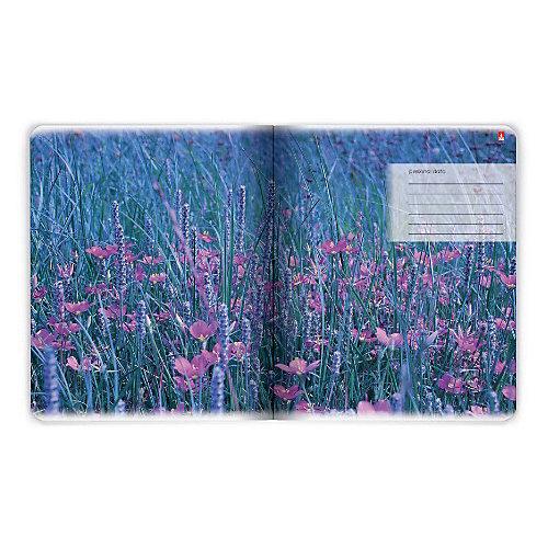Тетрадь Альт Лавандовое настроение 48 листов, 5 шт., клетка от Альт