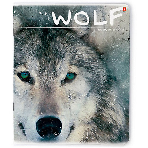 Тетрадь Альт Загадочные волки 48 листов, 5 шт., клетка от Альт