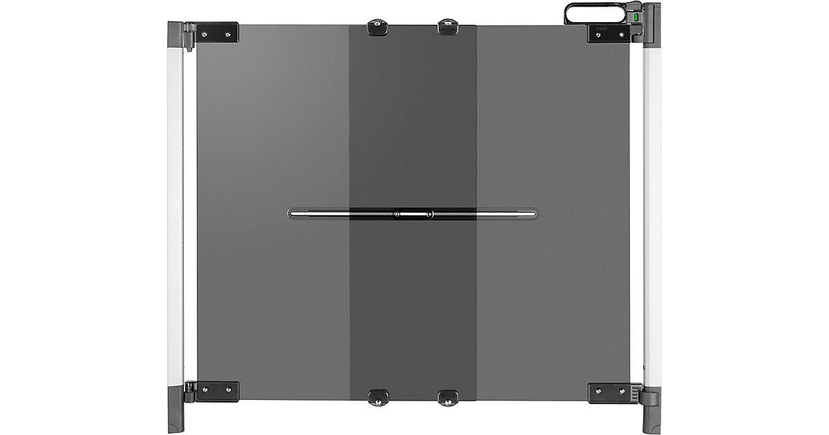 Reer · Schwenk- Türschutzgitter ClearVision, DesignLine, Plexi, anthrazit