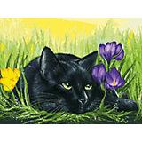 Картина по номерам Белоснежка «Кот и крокусы», 30x40 см