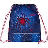 Мешок для обуви Erich Krause, Spider