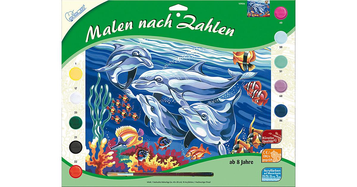 Malen nach Zahlen groß Delfine