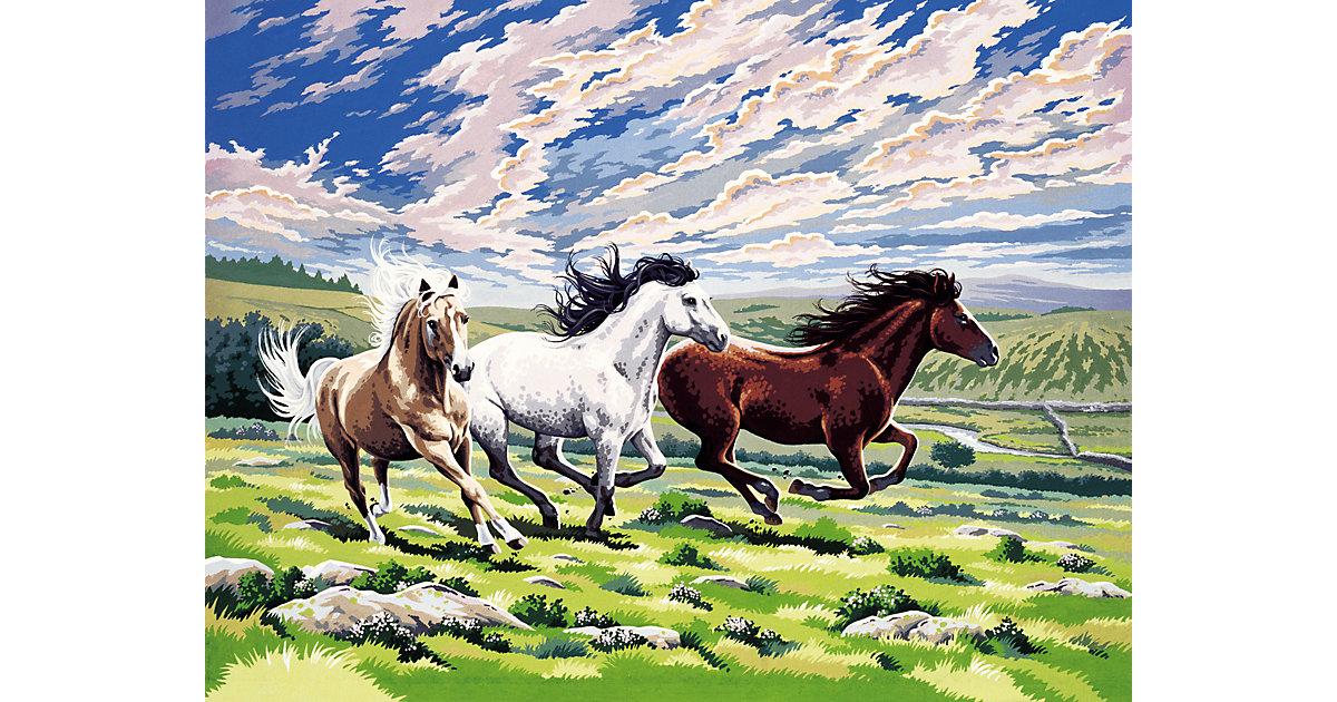 Malen nach Zahlen Pferde im Galopp