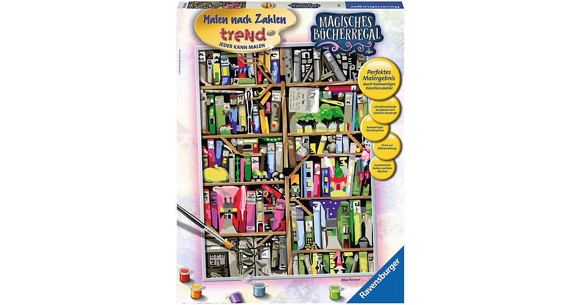Malen nach Zahlen Premium Magisches Bücherregal