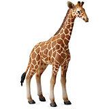 Коллекционная фигурка Collecta  Жеребенок Сетчатого Жирафа, L