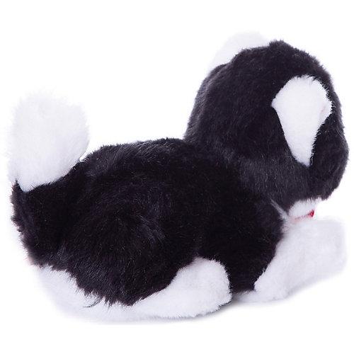 Мягкая игрушка Trudi Чёрно-белая кошечка, 15 см от Trudi