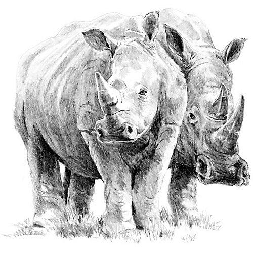 "Картина-эскиз по номерам карандашами Royal&Langnickel ""Носороги"", 22х29 см от Royal&Langnickel"