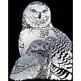"""Гравюра Royal&Langnickel """"Полярные совы"""", серебро"""