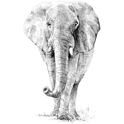 "Картина-эскиз по номерам карандашами Royal&Langnickel ""Слон"", 22х29 см от Royal&Langnickel"