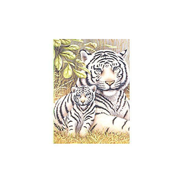 """Картина по номерам Royal&Langnickel """"Белые тигры"""", 22х29 см"""