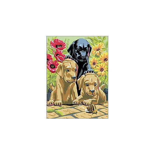 "Картина по номерам Royal&Langnickel ""Щенки лабрадора"", 22х29 см от Royal&Langnickel"