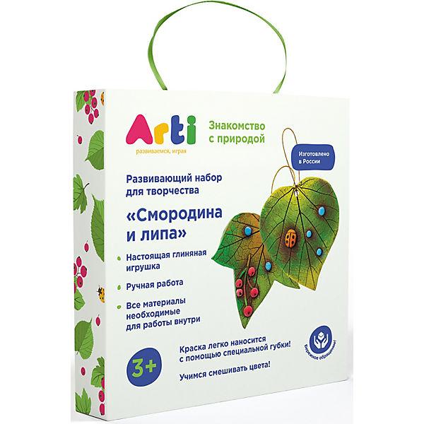 "Набор для декорирования Arti ""Cмородина и липа"""