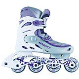 Роликовые коньки VISTA фиолетовый