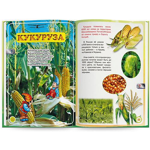 """Книга для говорящей ручки Знаток """"Мы познаём мир"""" Весёлый огород от Знаток"""