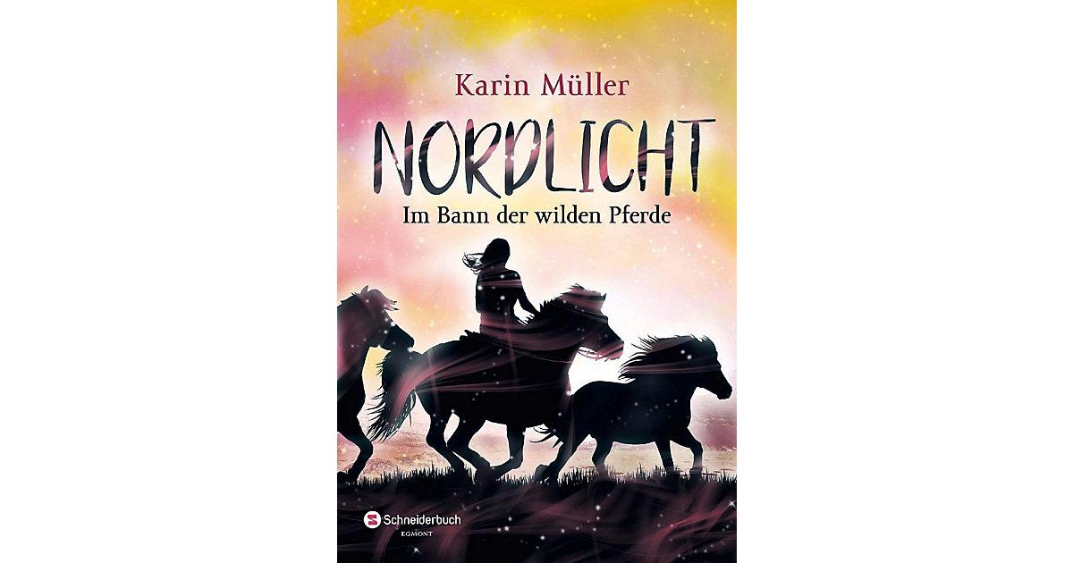 Nordlicht: Im Bann der wilden Pferde, Band 2
