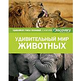 """Энциклопедия """"Discovery Education"""" Удивительный мир животных"""
