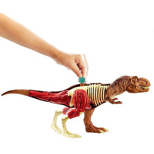 Игровой набор Jurassic World «Анатомия динозавра» Тиранозавр Рекс от Mattel