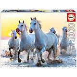 Пазл Educa Белые лошади на закате 1000 элементов
