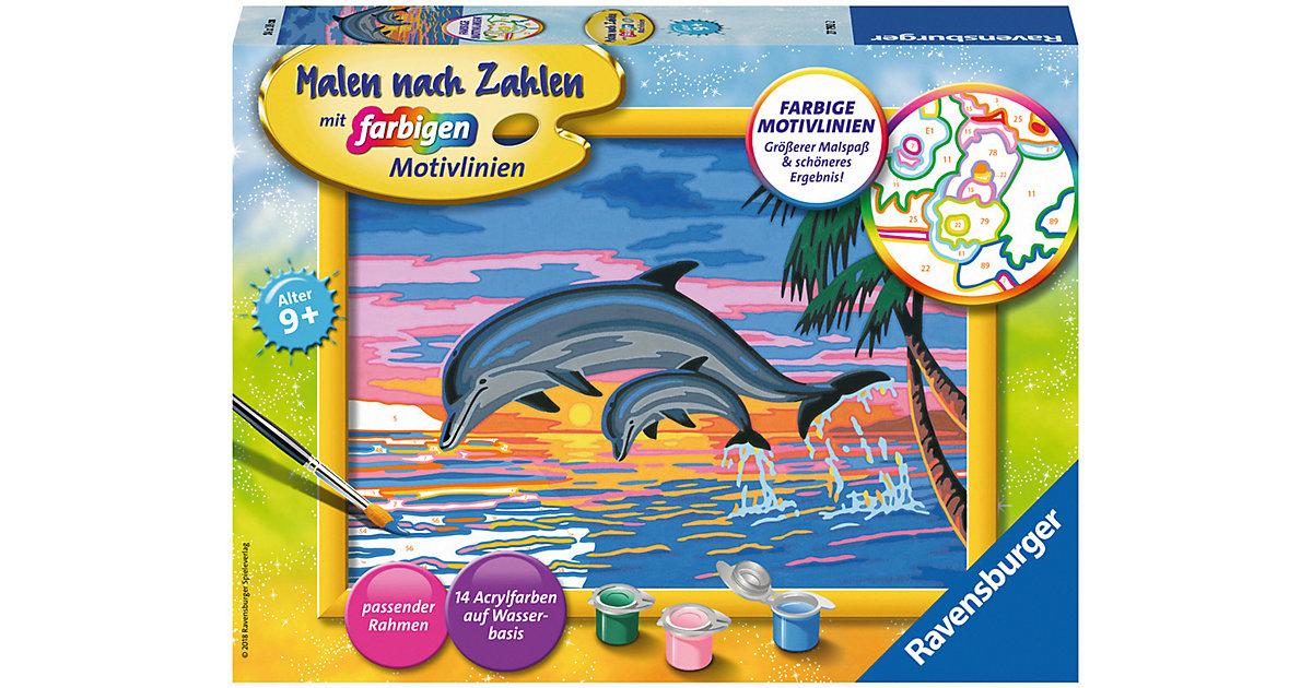 Malen nach Zahlen Paradies der Delfine
