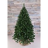 Сосна рождественская Triumph Tree, 185 см