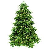 Ель стройная Triumph Tree Нормандия с 232 лампами, 155 см