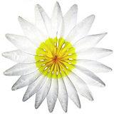 """Бумажное украшение Патибум """"Цветок"""" 50 см, белый"""