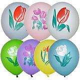 """Воздушные шары Latex Occidental """"Тюльпаны"""" 25 шт, пастель + декоратор"""