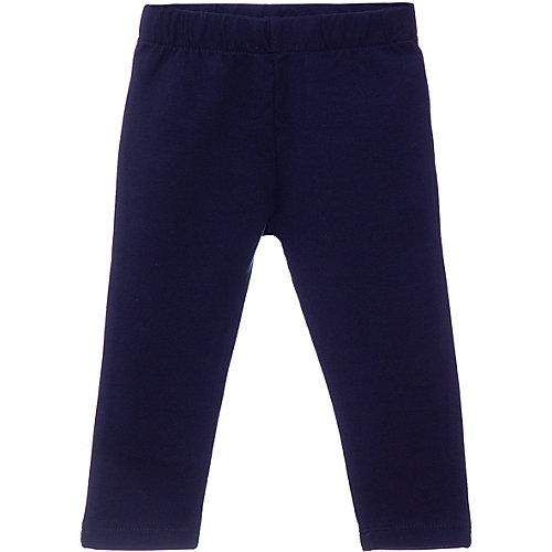Спортивные брюки Z - темно-синий от Z